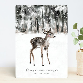 winter baby deer Holiday Cards