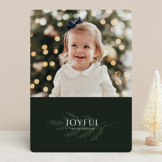 Nature Holiday Photo Cards