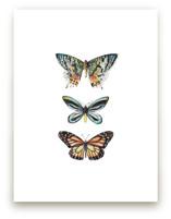 Butterfly Colorful Wate... by Lauren Rogoff