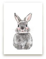 Baby Animal Rabbit Wall Art Prints