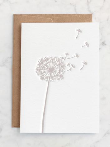 The beauty of dandelion