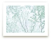 Batik Forest