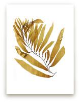 kelp print 002 by aeryn donnelly design