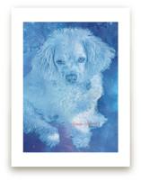 Pup Universe by Mariecor Agravante