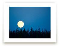 Goodnight Moon 2 by Jan Kessel