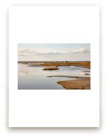 MarshLand#1 by van tsao