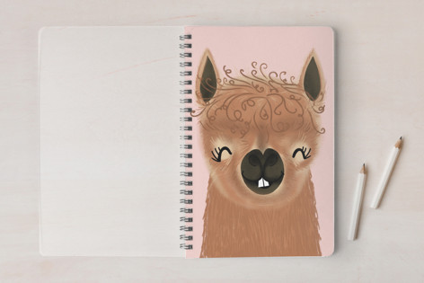 PALpaca Notebooks