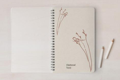 First Robin Notebooks