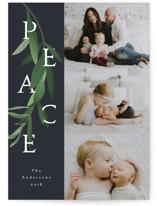 Peace Branch by Tatiana Nogueiras