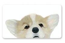 Corgi Pupper by Deborah Chou