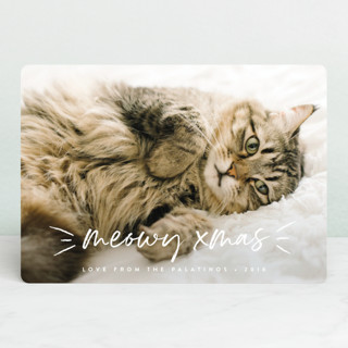 Meowy Holiday Photo Cards
