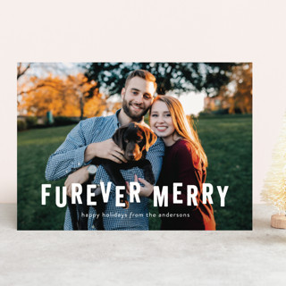 Furever Merry Holiday Photo Cards