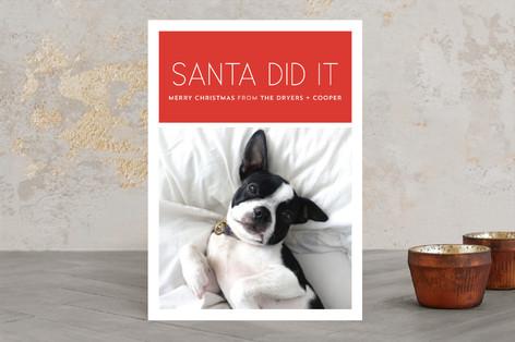 Santa Did It Holiday Photo Cards
