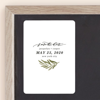 Olive Branch Save The Date Magnets