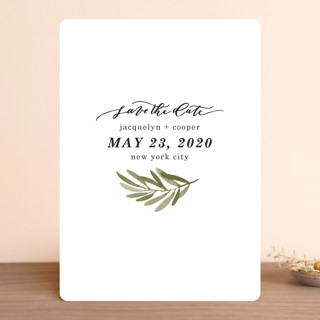 Olive Branch Save The Date Cards