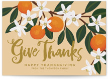 Orange Blossoms Thanksgiving Petite Cards