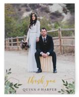 Succulent Surround Thank You Postcards